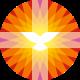 PKN logo